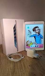 Ipad Mini 2 32 GB Wifi Only