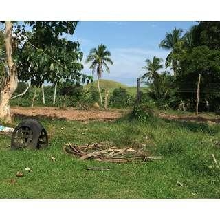 1 HECTARE BOHOL LOT FOR SALE!!!