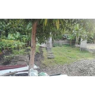 1,000 sqm lot in Linao, Talisay City for Sale