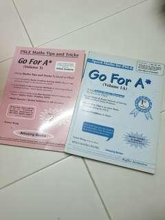 Go for A* PSLE tips and tricks