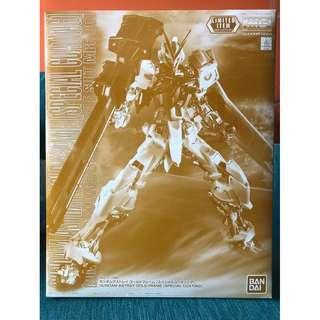 MG Astray Gold Frame [Special Coating] Limited Item