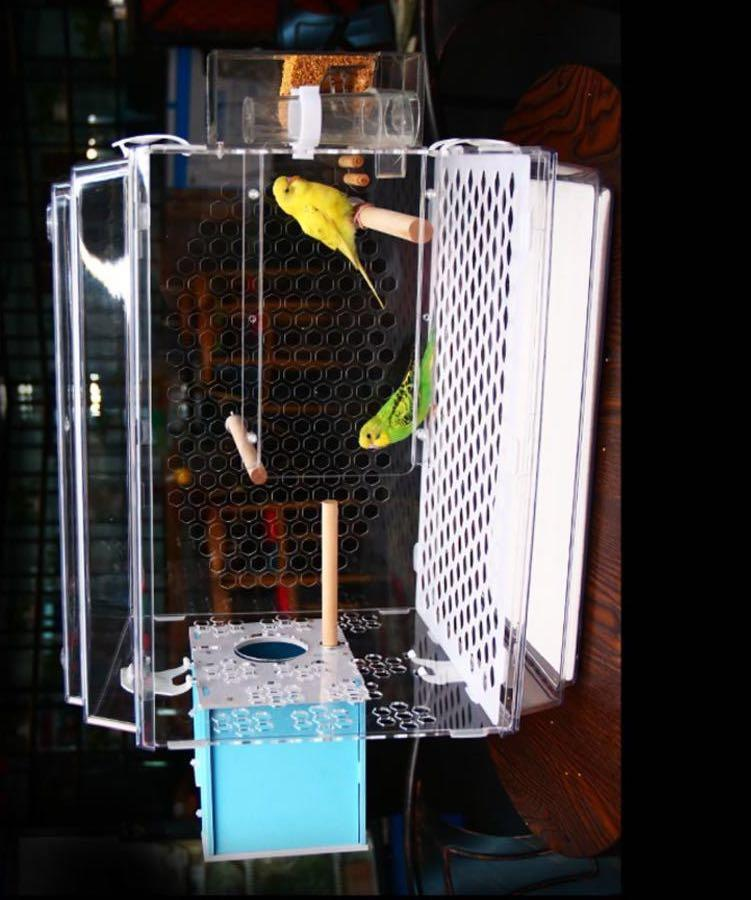 Acrylic Bird Cage with Anti-mess Feeder / Water Container