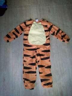 Tiger 3-4 yrs old