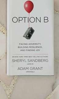 Facing Adversity Option B