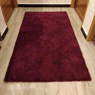 Ikea Carpet (Like New!)