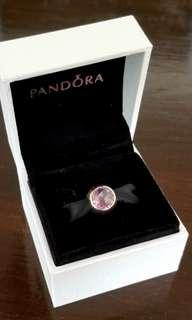 Brand new Pandora charm