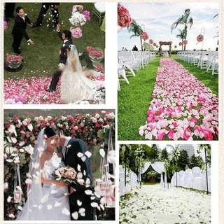 Artificial 1000 petals for Valentines suprise or any event surprise