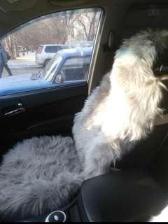 1 PC Furry car seat cover universal