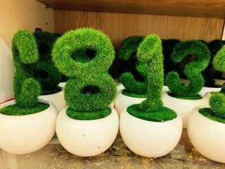 仿真植物盆栽擺設 星星 數字(不齊)