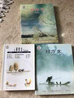 Chinese zuowen 作文 model essay guide book