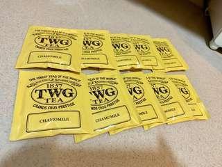TWG chamomile tea bags 洋甘菊獨立包裝茶包