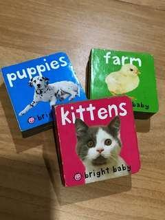 3 mini combo books
