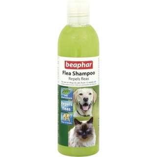 🚚 Beaphar Flea Shampoo Repels Fleas