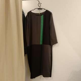 [PRICE REDUCED] PLUS SIZE MS READ Long Sleeved Dress/Long Top