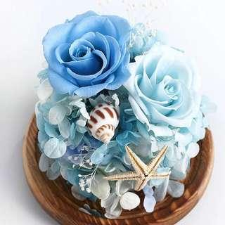 💖 Preserved Roses-Valentine's Flowers- Everlasting Flowers