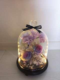 Valentines Gift rose in the jar