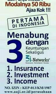 CAR 3i Networks Investment Insurance Income
