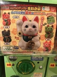 招財貓 扭蛋 綠色 合格 貓 喵 未開