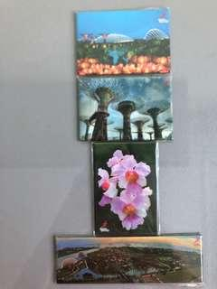 Garden by the Bay / Orchid tin plate magnet Singapore souvenir