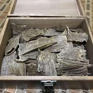 🚚 Cultivated Oud/Agarwood