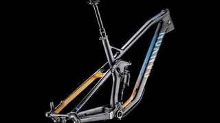 Canyon Strive CF 9.0 Race Team 2017 (Frame Only)