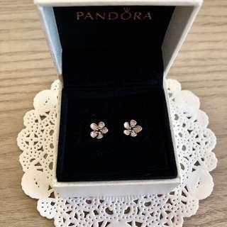 🚚 30% OFF BN Pandora Cherry Blossom Earrings 🌸