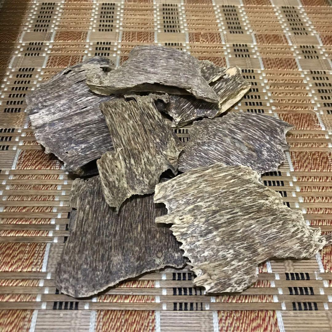 Cultivated Oud/Agarwood