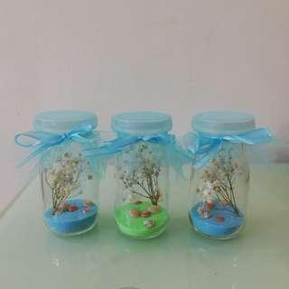 Baby's breath dried real flower in glass bottle with sea shell - suitable as a Birthday gift / Valentines day gift / special friends gift / also can add your own message inside the bottle / anything you like