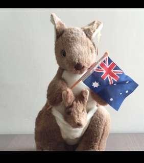 全新澳洲袋鼠公仔