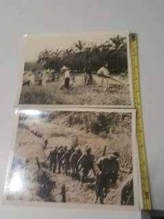 1949 Rare History Of Fighting The Communist In Malaya.