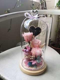 Preserved Rose (Valentines Day gifts)