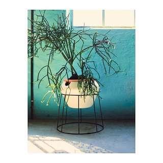 3 piece self watering plant pot set