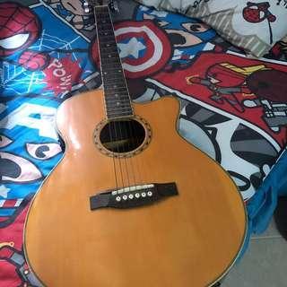 Grier Prillanfe Acoustic Guitar