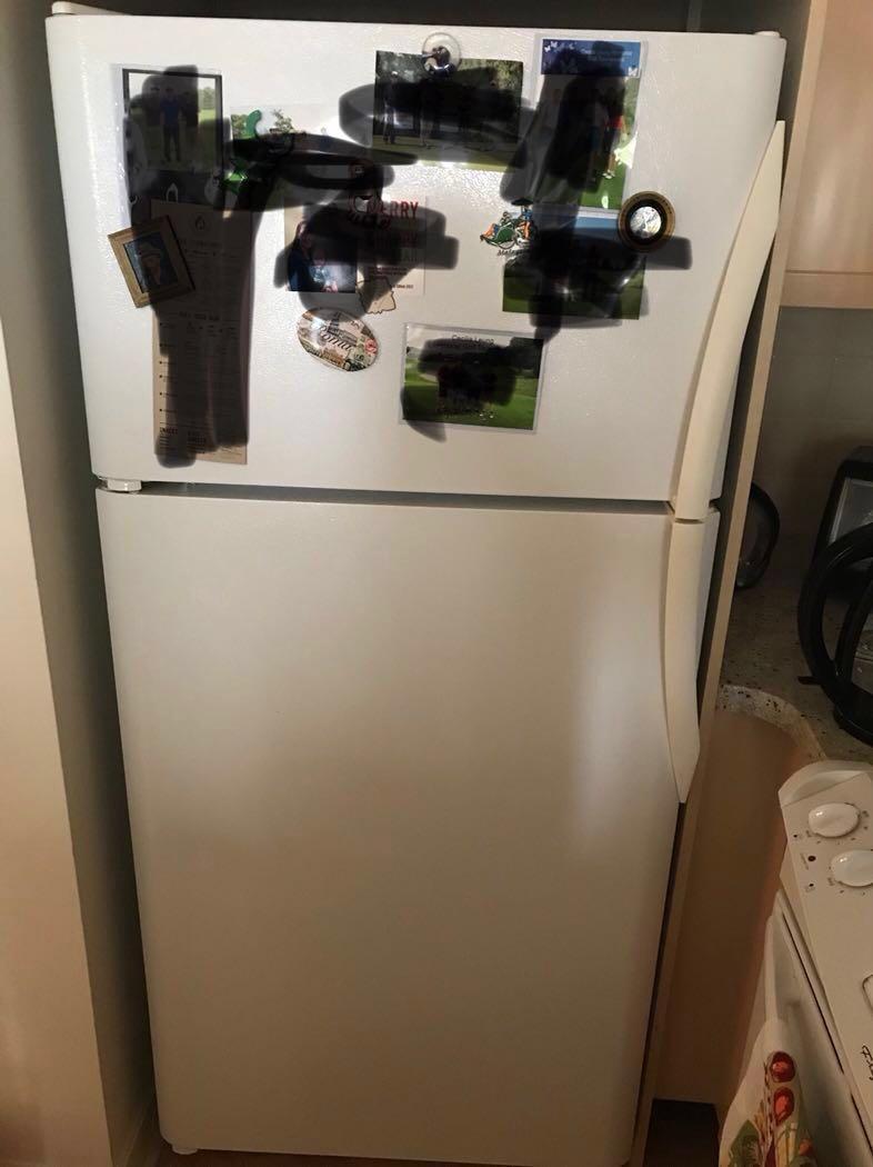 Kitchen appliances: fridge, stove, dishwasher, and microwave