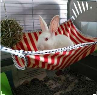 Bunny Hammock 1 for $8 or 2 for $10 FREE 1pc