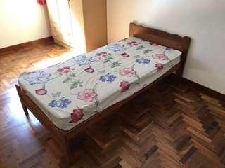 Single Bed with Wood Frame