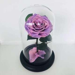 🚚 Preserved Rose - FREE Delivery