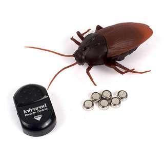 Mainan Prank Kecoa Dengan Remot Kontrol