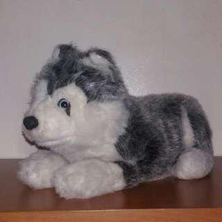 Hirokin House Plush Husky Pup Toy/Decor