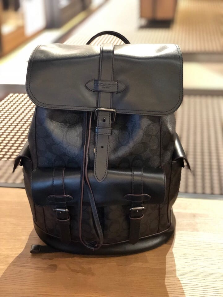 5178f65b6e91 465- VALENTINES 1 DAY PROMO! Coach Hudson Signature Leather Backpack ...