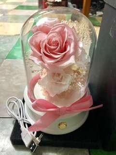 情人節 花 love 生日禮物 結婚禮物 定情信物 女朋友 白色情人節 2月14 三月十四 粉紅色