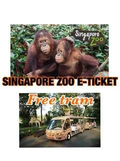 🚚 SINGAPORE ZOO + FREE TRAM