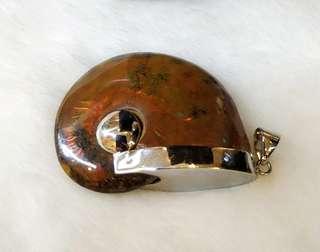 Ammonite on Silver Pendant (Australia - 37g)