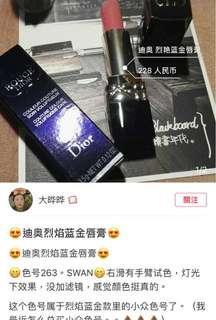 Dior263唇膏