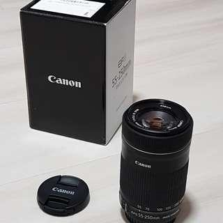 Canon 55-250mm IS STM (latest version)
