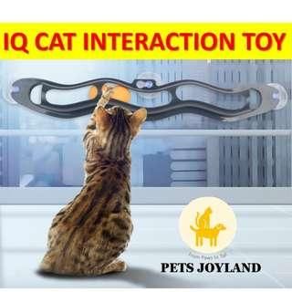 Cats IQ interaction window bay toy