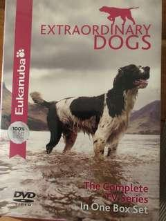 🚚 Extraordinary Dogs DVD