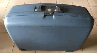 Delsey 29-inch Luggage Bag