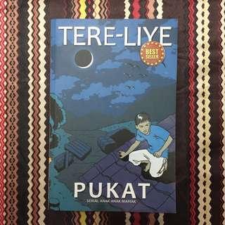 Novel Pukat (Serial Anak-Anak Mamak) karya Tere Liye