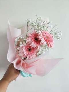 🚚 International Women's Day Pink Gerberas